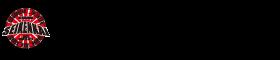 HIROSHIMA SEIKENKAI